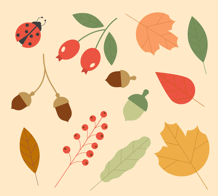Icons of Autumn. Set of colorful leaves and berries. Isolated on white background. Simple cartoon flat style. vector illustration
