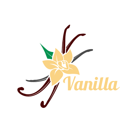 Vanilla flower and pods. Vector icon silhouette isolated on white background. Aromatic spice organic logo illustration.