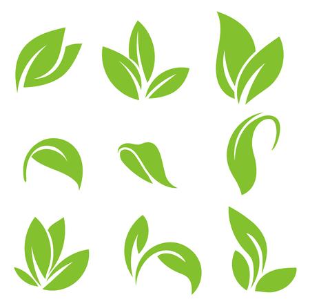 Bladeren pictogram vector set geïsoleerd op een witte achtergrond. Verschillende vormen van groene bladeren van bomen en planten. Verzameling van geïsoleerde groene bladeren pictogrammen op witte achtergrond.
