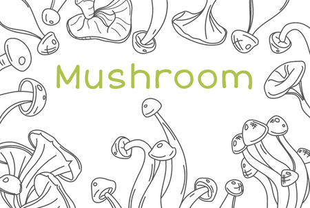 Mushroom hand drawn vector frame. Isolated Sketch organic food drawing template. Great for menu, label, product packaging