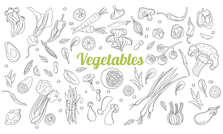 Linear graphic. Vegetables background. Scandinavian style. Healthy food. Hand drawn fruits and vegetables doodle set. Иллюстрация