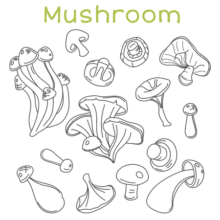 Mushroom hand drawn sketch vector illustration. Organic vegetarian product for menu, label, packaging.