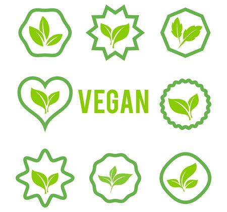 Conjunto de vector de icono de hojas aislado sobre fondo blanco. Varias formas de hojas verdes de árboles y plantas.