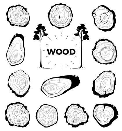 Collection of tree-rings. Set a cross section of the trunk with tree rings. Vector illustration. Logo. Tree growth rings. Tree trunk cross-section.