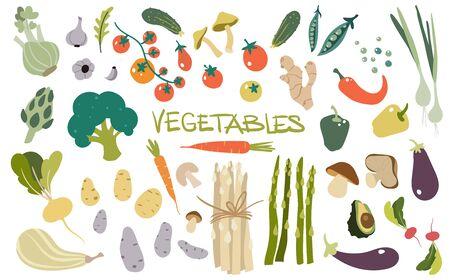 Hand getekende verse heerlijke groenten. Pakket van gezonde en smakelijke veganistische producten, gezond vegetarisch eten.