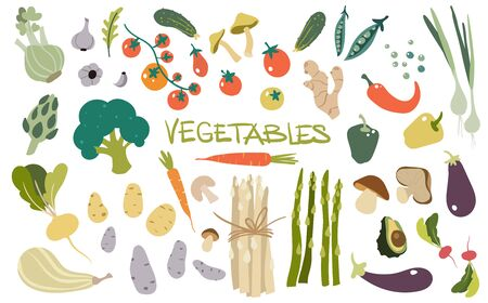 Ręcznie rysowane świeże pyszne warzywa. Pakiet zdrowych i smacznych produktów wegańskich, zdrowe wegetariańskie jedzenie.