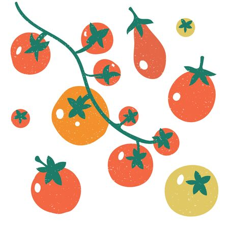Set of red tomatoes. A branch of tomatoes.Set with hand drawn colorful doodle vegetables.
