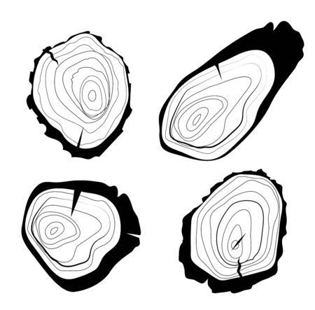 Set of four vector tree rings background and saw cut tree trunk. Grayscale wooden stump isolated on white.
