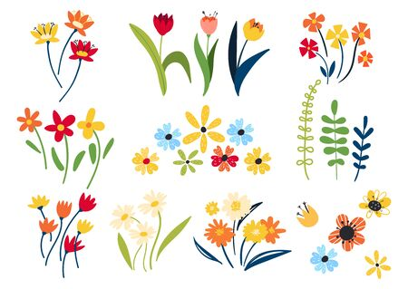 Collection of wild and garden blooming flowers isolated on white background. Wildflowers in flat style. Bundle of bouquets. Set of decorative floral design elements.