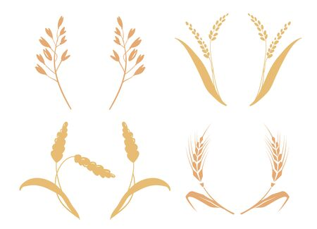 whole bread grains or field cereal nutritious rye grained agriculture products ear. Symbols for logo design Wheat. Agriculture, corn, barley, stalks, organic plants, bread, food natural harvest 写真素材 - 128906598