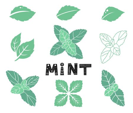 Blue mint leafs. Icons and silhouettes set. Leaves and branches. Vector illustration isolated on a white background.