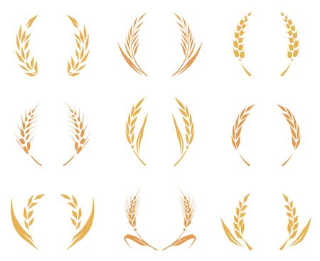 Wheat or barley ears. Harvest wheat grain, growth rice stalk and whole bread grains or field cereal nutritious rye grained agriculture products ear symbol. Isolated vector icons set. Baked wheat logo. Фото со стока - 131466830