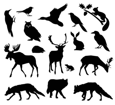 Woodland forest. Animals living in european forest. Vector icon set of silhouette. National park. Ilustracja
