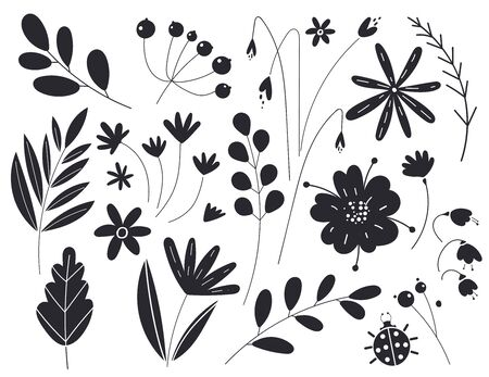 Silhouettes of leaves and flowers. Vector illustration in black color isolated on a white background. Botany plants. Sketch of floral elements. Ilustracja