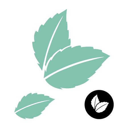 Logo vettoriale di foglie di menta. Foglia verde. Icona di congedo di menta blu su bianco. Logo vettoriale di foglie di menta. Logo