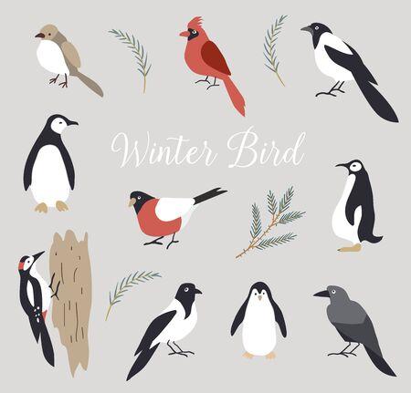 Conjunto de pájaros lindos de invierno aislado sobre fondo blanco.