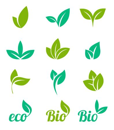 Set of green leaves design elements. Eco icon with green leaf