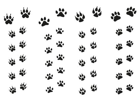 Trails of animals steps isolated on white background. Paw Print.
