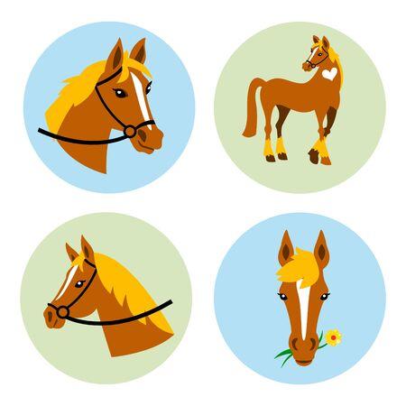 Vector Horse icons set. Horse icons set.Horse icons flat. Horse icons.