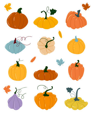 Pumpkin of various shapes and colors. Thanksgiving and Halloween Elements. Set of cartoon elements of autumn. Orange vegetable. Autumn harvest. Scrapbook collection of fall season elements.