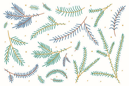 Tree branches. Christmas Fir Branches. Needle green spruce branches. Vector illustration in flat style isolated on white background. Christmas and New Year design. holiday decoration, winter symbols
