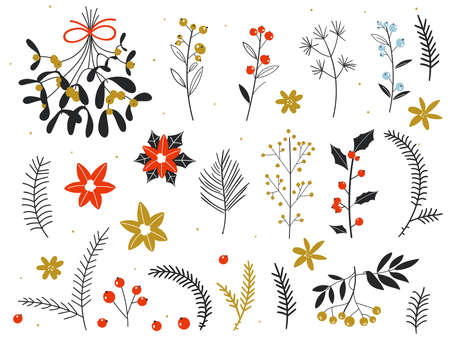Christmas floral collection with winter decorative plants and flowers. Winter branches and leaves. Hand drawn floral elements. Merry Christmas hand drawing greeting card. winter elements. botanical