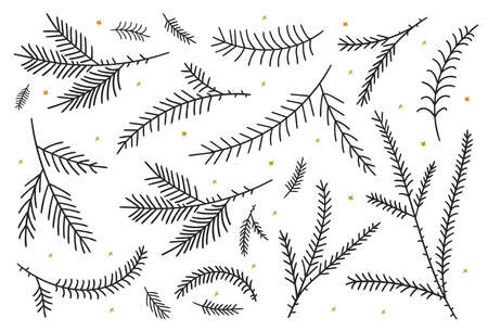 Christmas silhouettes of fir-tree branches. Vector branches. Hand drawn floral elements in doodle style. Ink vintage botanical illustrations.