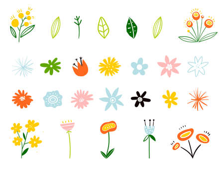 Spring and summer flowers in flat style isolated on white background. Plants and branches. Set of floral elements. Early spring forest and garden flowers isolated on white vector set.