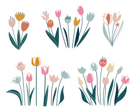 Tulips set. Flowers in a flat style. Vector isolated on white background. Easter, thanksgiving. Spring, hand drawn elements. Ilustracja