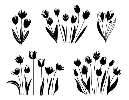Floral set. Sketches of flowers, plants, leaves. Hand drawn illustration. Silhouette of tulips in black and white style. Spring flowers isolated on white background.