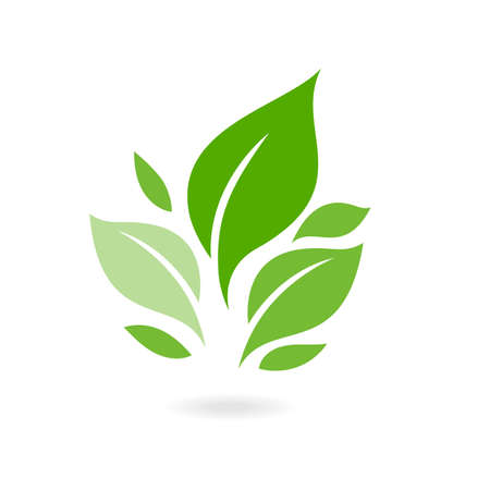 Green leaf ecology nature vector icon. plants and leaves. of green leaf ecology nature element vector icon. Tree leaf ecology nature vector icon.
