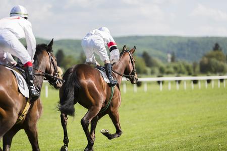 corse di cavalli: Due piloti sul circuito concorrenza corsa