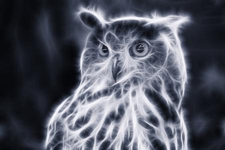 accipiter gentilis: Eagle OwlAn eagle owl portrait, fractal