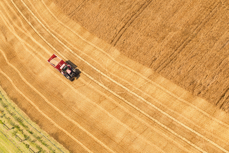 Aerial view on the combines working on the large wheat field. Zdjęcie Seryjne - 84716028