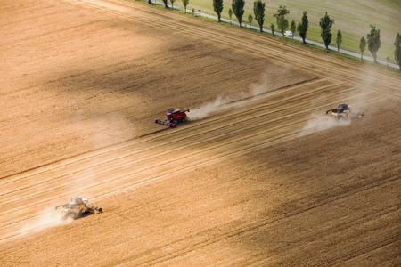 Aerial view on the combines working on the large wheat field. Zdjęcie Seryjne