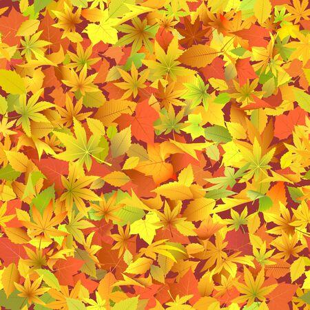 Autumn leaves Stock Vector - 12808856