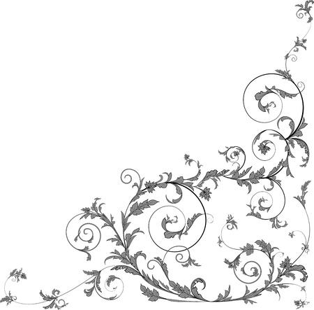 Floral scrolls  Illustration