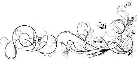 Vines  Illustration