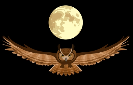 illustration of flying owl in the night sky with moon  Stock Vector - 18234355