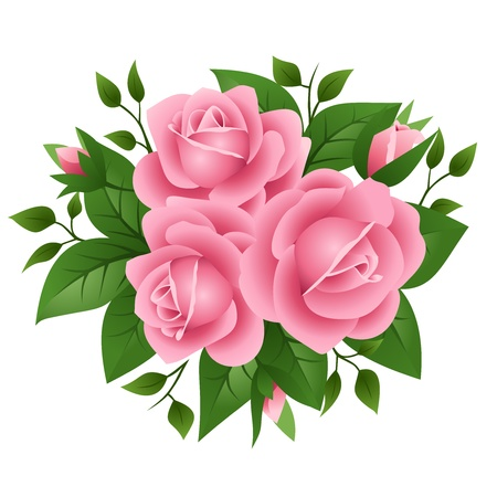 illustration of three pink roses  Illustration