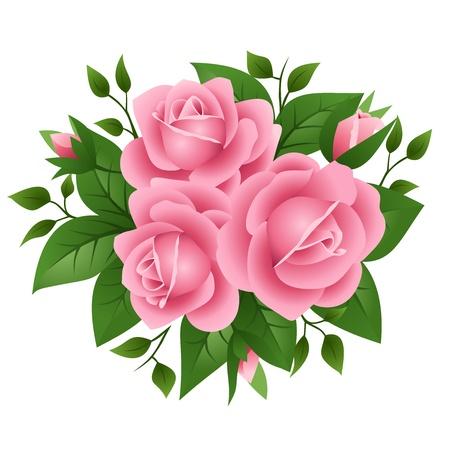 rosas rosadas: ilustraci�n de tres rosas de color rosa