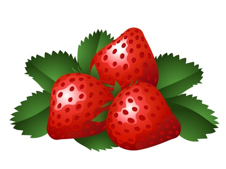 Vector illustration of three strawberries Vector