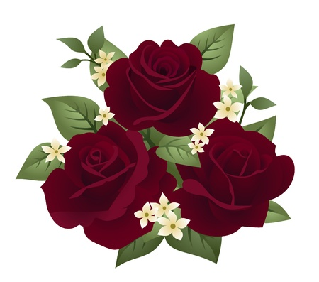 Vector illustration of three burgundy roses Vector