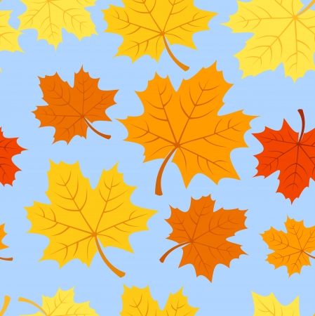 Seamless pattern with autumn maple leaves. Vector illustration. Stock Vector - 18259440