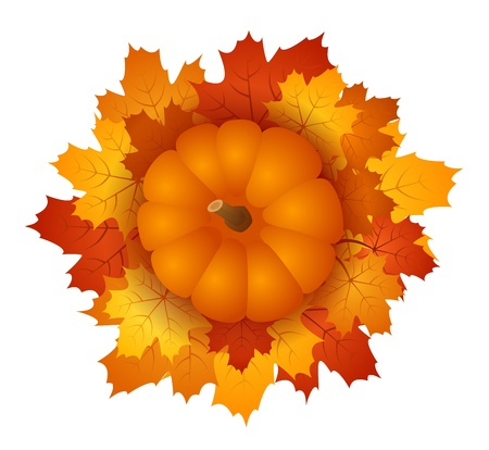 Pumpkin and autumn maple leaves. EPS 10 vector illustration. Stock Vector - 18259506