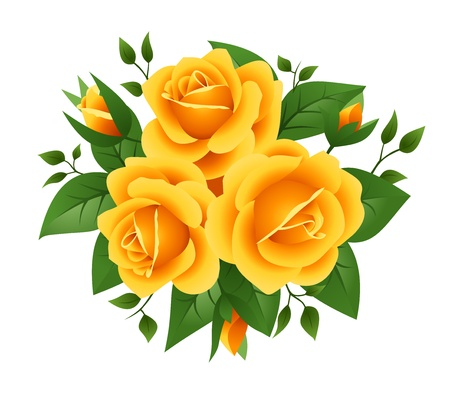 leafage: Three yellow roses. Vector illustration.