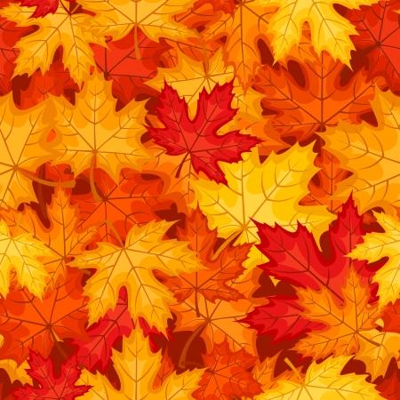 fallen: Seamless pattern with autumn maple leaves  Vector illustration