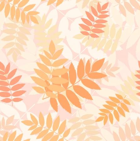 Seamless pattern with autumn rowan leaves  Vector Stock Vector - 18259516
