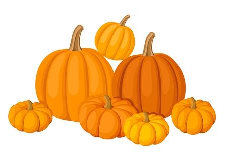 Group of seven orange pumpkins.  Vector