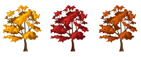 Set of three autumn trees.  Vector